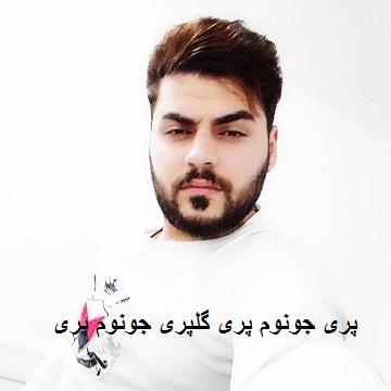 دانلود آهنگ پری حسین عامری | کامل + پخش آنلاین