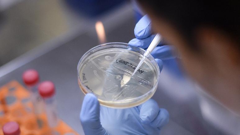 کانادا آزمایش واکسن تولید شده برای ویروس کرونا را آغاز میکند