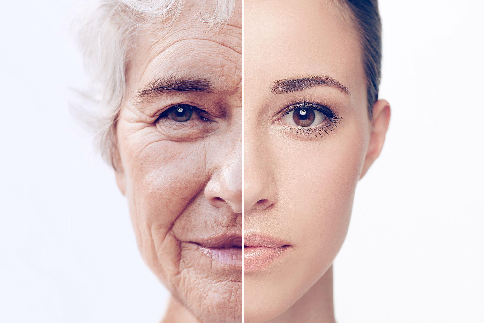 مولکولهایی که میتوانند روند پیری را کنترل کنند