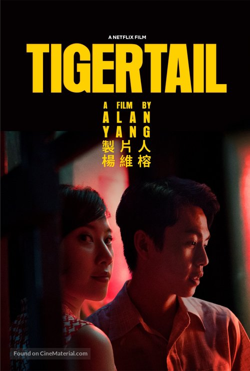 دانلود فیلم Tigertail 2020 - دم ببر
