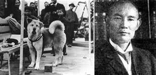 داستان سگ معروف ژاپنی هاچیکو