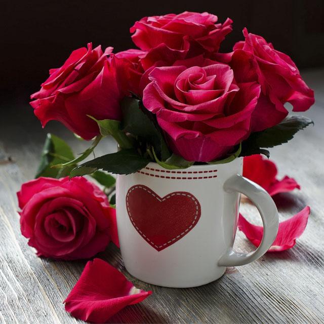 داستان عاشقانه گل سرخ