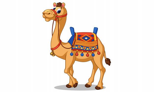 حکایت کوتاه و طنز « شتر سواری ملا »