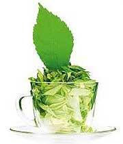 چای سبز,خواص چای سبز,خاصیت چای سبز