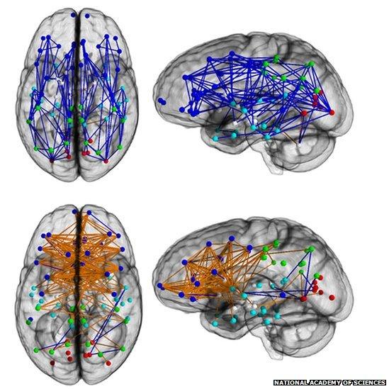 http://rozup.ir/view/3182023/71491129_brainpnas.jpg
