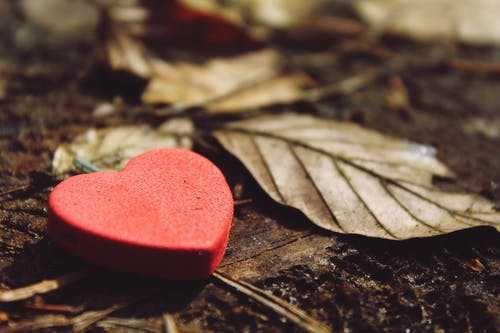 عکس قلب شکسته سیاه سفید متن دار متحرک و زیبا