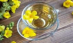 مقابله با آسم با چند چاي گياهي