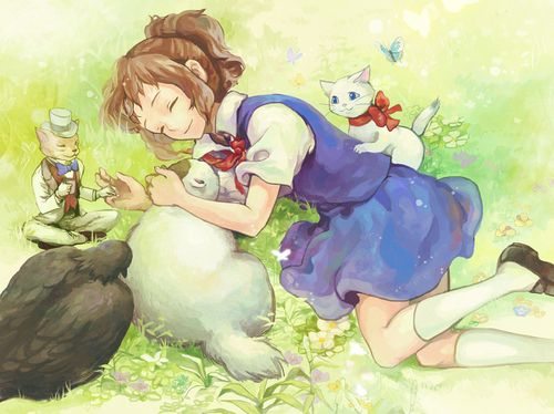 دانلود انیمیشن  Neko no Ongaeshi