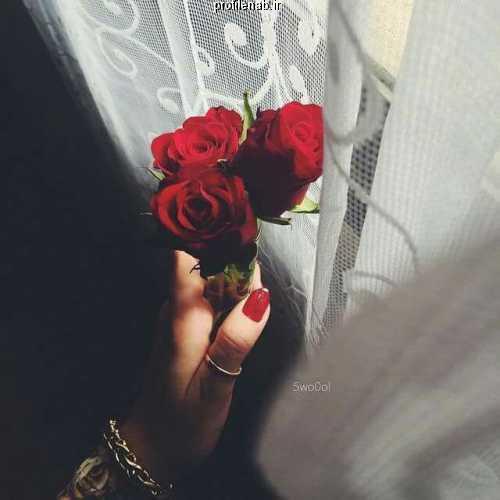 پروفایل گل و دست دختر