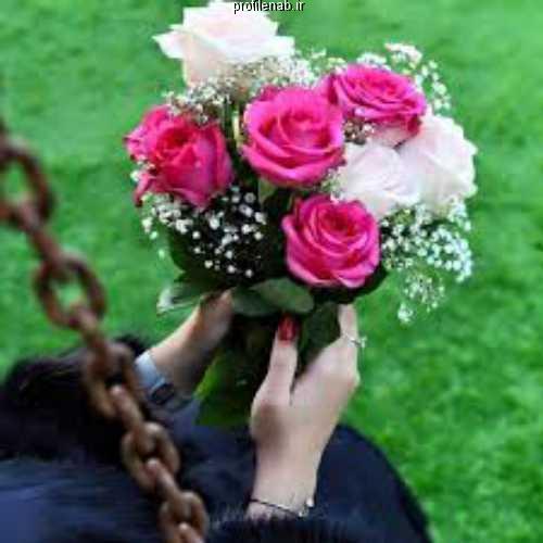 پروفایل دختر و گل رز