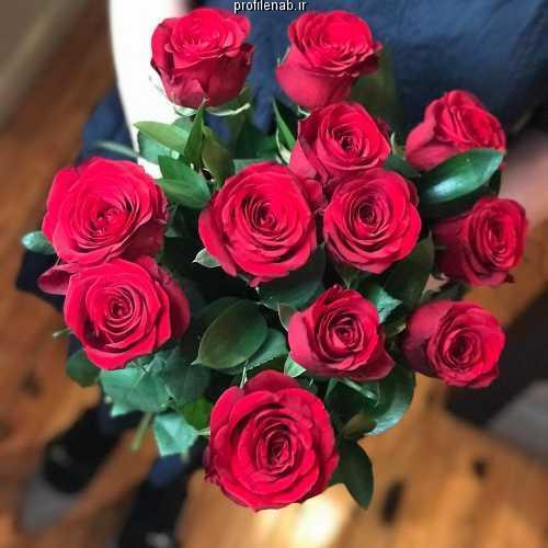 عکس دست دختر و گل برای پروفایل