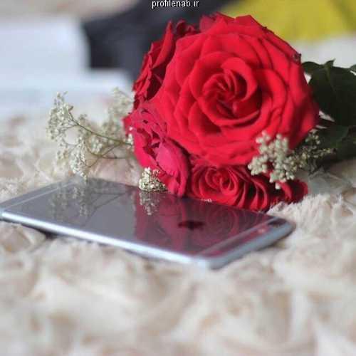 عکس پروفایل دست دختر و گل