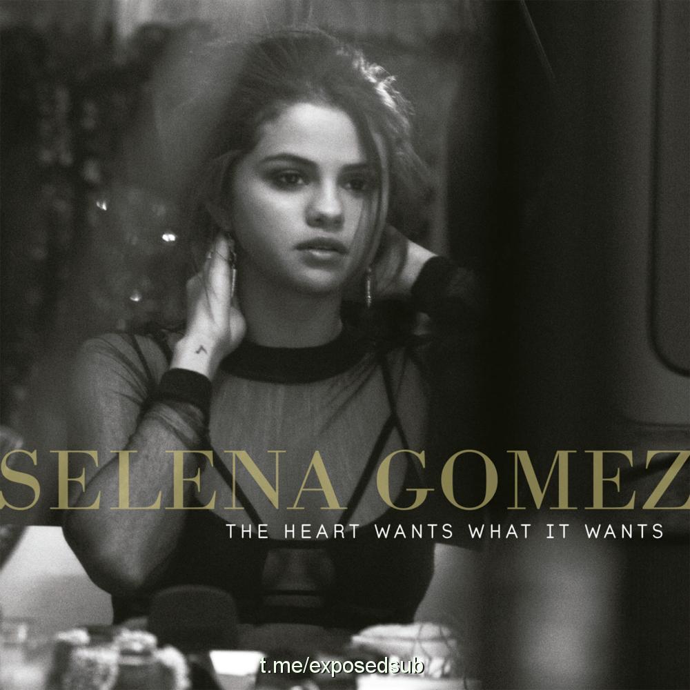 ترجمه و دانلود موزیک ویدیو آهنگ the heart wants what it wants از Selena Gomez