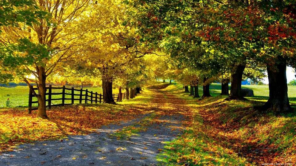 عکس خوشگل از طبیعت