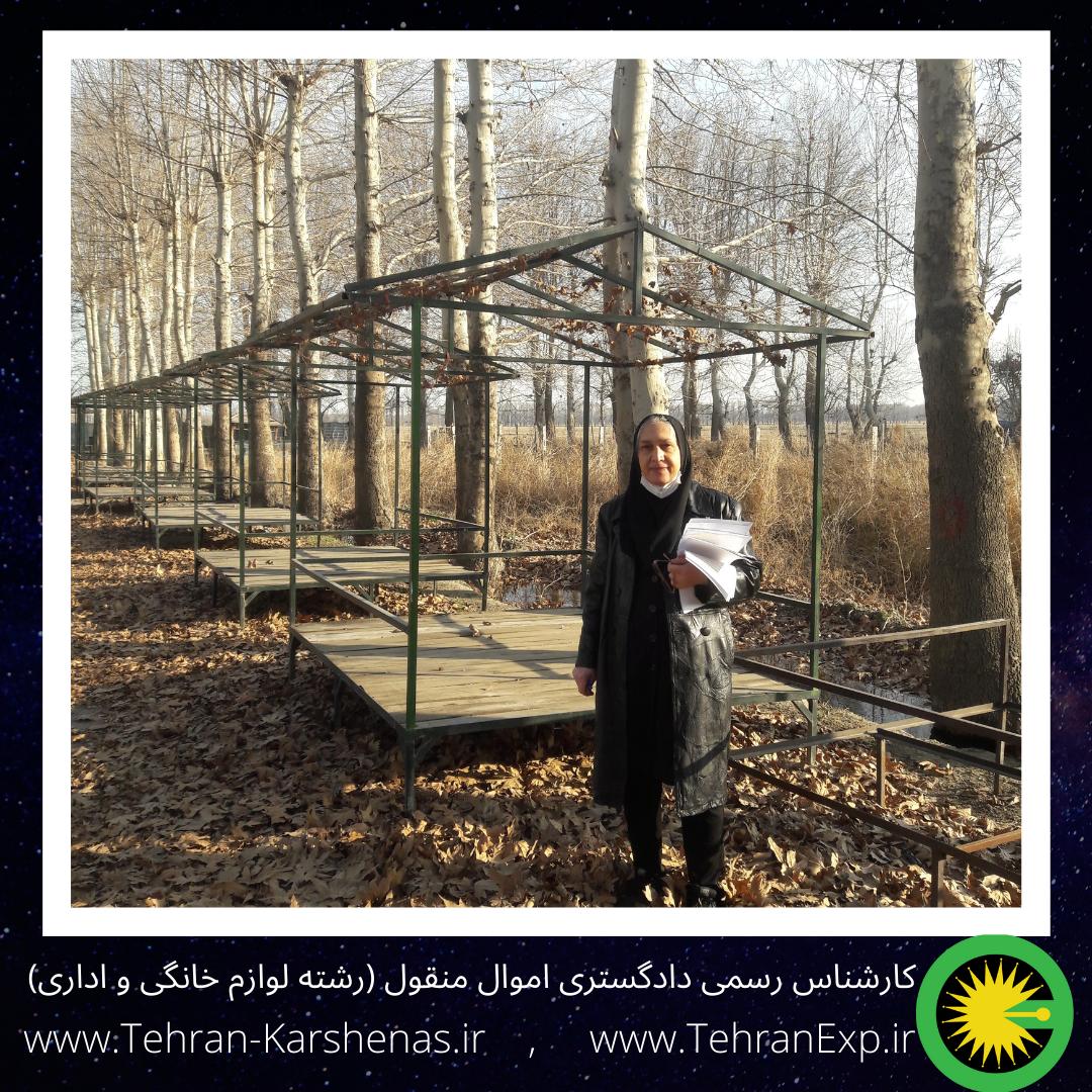 بازدید کارشناسی از مجموعه تفریحی در تهران