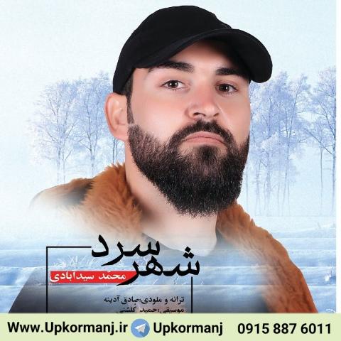 دانلود آهنگ جدید محمد سیدآبادی به نام شهر سرد