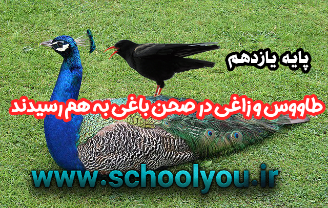 بازنویسی حکایت طاووس و زاغی در صحن باغی به هم رسیدند صفحه 68 پایه یازدهم