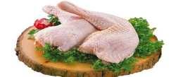 روش تشخيص مرغ فاسد شده