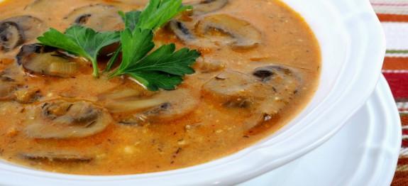 طرز تهیه سوپ قارچ مجارستانی