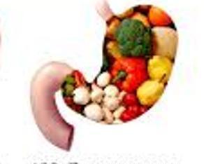 سالمترین خوراکیها برای روده ...!!!!