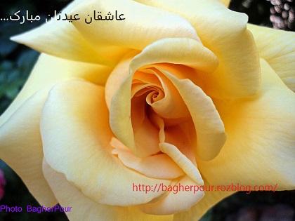 روزه یک سو شد و عید آمد و دلها برخاست...(حافظ)