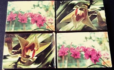 گل4.jpg (400×245)