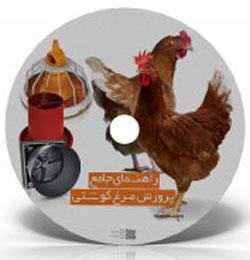 طرح توجیهی پرورش مرغ
