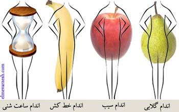 بهترین تمرینات را برای شکل بدنی تان بشناسید