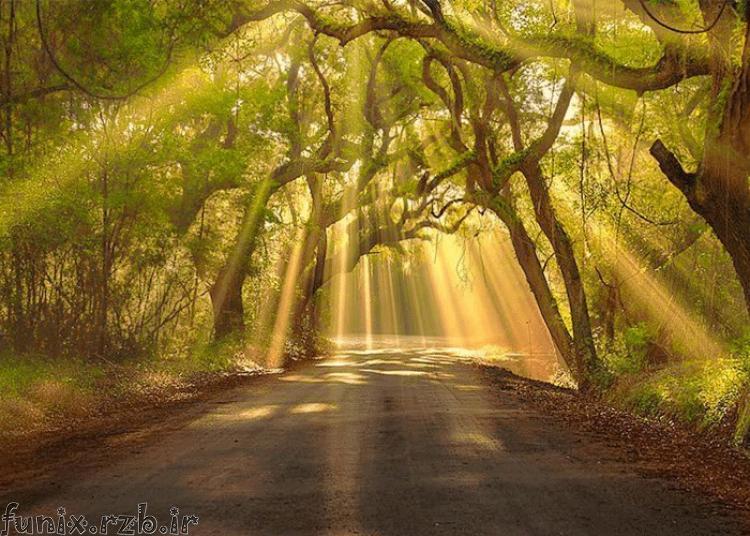 مناظر زیبای طبیعت