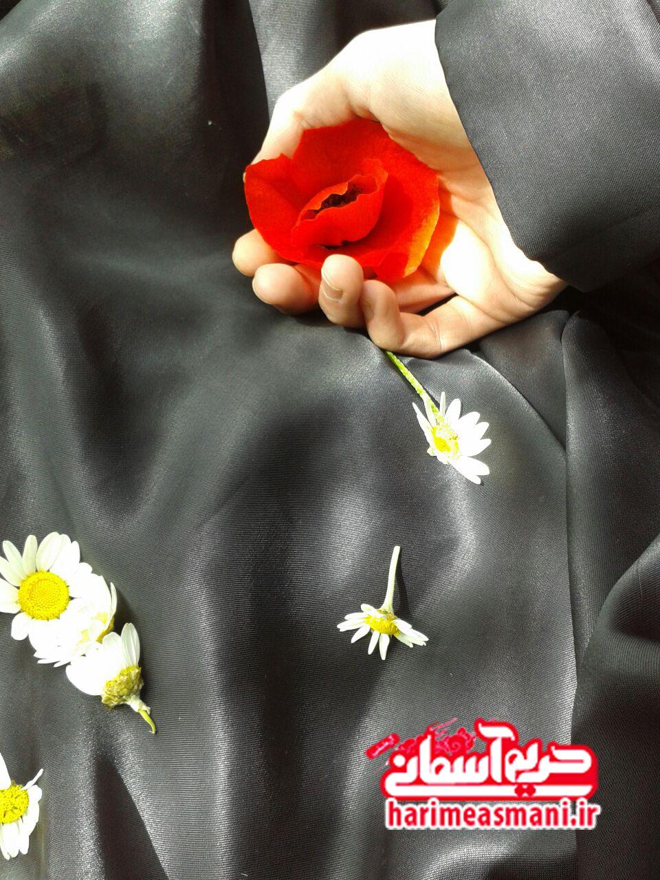 گل شقایق چادرم