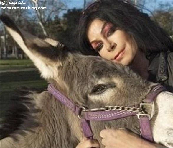 از ازدواج با الاغ در غرب تا آرامش سگی در ایران + تصاویر