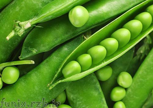 خواص درمانی لوبیا سبز