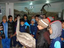 بازدید دانش آموزان دبستان شهید آیت(دوره اول)از گنجینه تنوع زیستی استان خراسان جنوبی