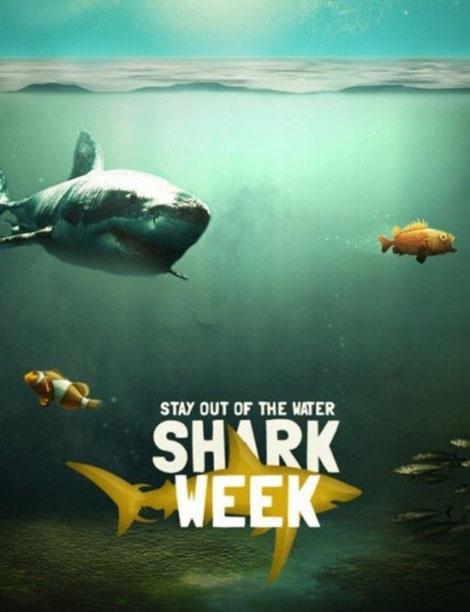 دانلود مستند جدید کوسه های ماکو Shark Week – Monster Mako 2015