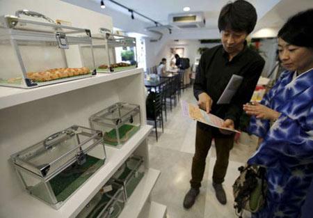 کافی شاپ مارها در توکیو (+تصاویر)