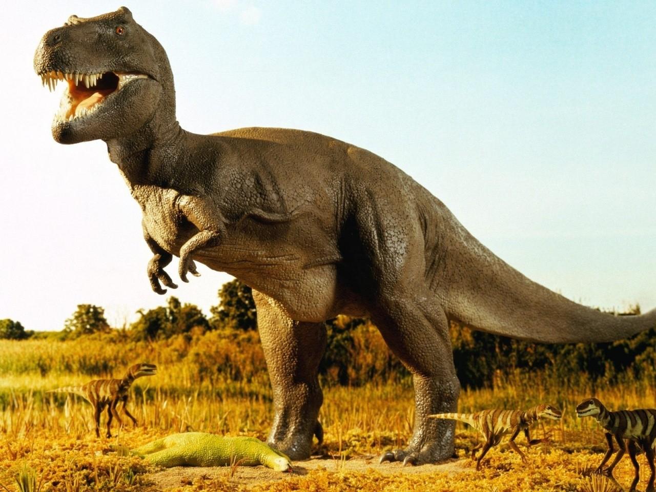 چرا دایناسورها اینقدربزرگ بوده اند !!