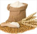 دستورالعمل تعيين خواص رئولوژيكي خمير حاصل از آرد گندم (دستگاه اكستنسوگراف)