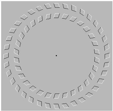 تست هوش،خطای دید،خطای دید جالب، خطای دید جدید،مجموعه عکس های جالب،مجموعه عکس های خطای دید،مجموعه عکس های خطای دید جدید،مجموعه عکس های خطای دید پاییز 94،عکس