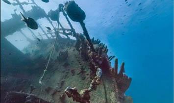 تصاویر زیبا استریت ویو گوگل از اعماق اقیانوس