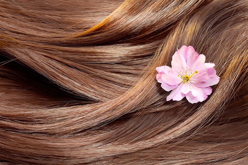14 راز سلامت مو