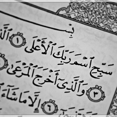 دانستی قرآنی