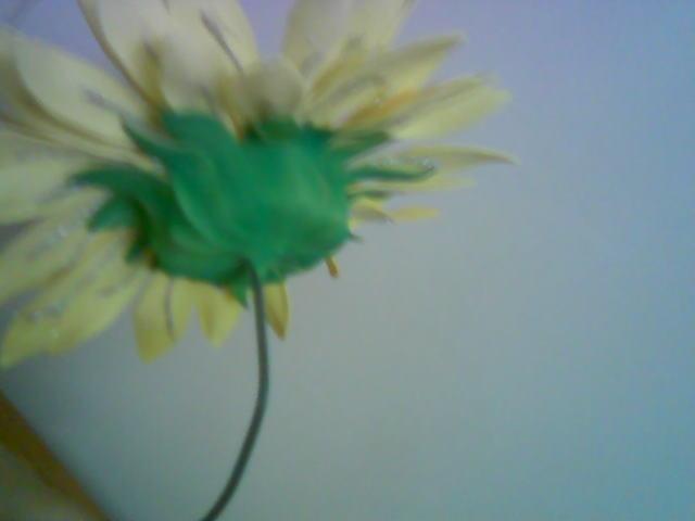 آموزش گل بلندر آفتاب گردون