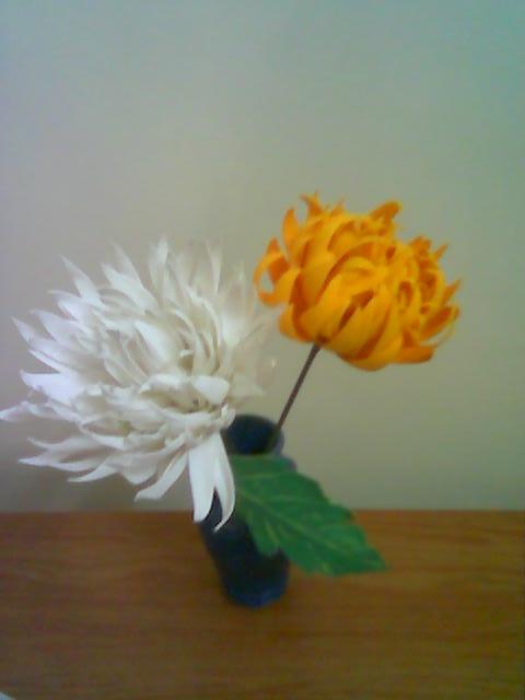 آموزش گل بلندر داوودی شماره 2