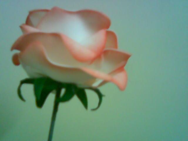آموزش ساخت گل رزبلندر