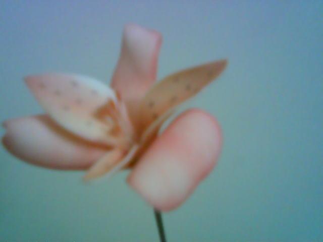 آموزش ساخت گل آلسترومریا