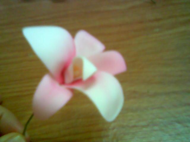 آموزش ساخت یک گل تزئینی با تصویر