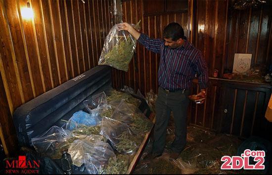 کشف 82 کیلوگرم ماده مخدر گراس در منطقه فرحزاد تهران