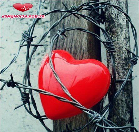 قلب هر کس اندازه مشت اوست!