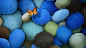 علاقمند به سنگ های زینتی این مطلب را بخوانید.