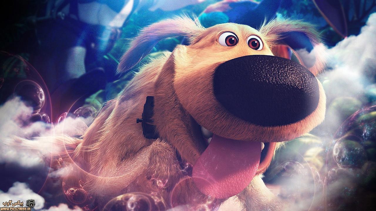 عکس اچ دی سگ